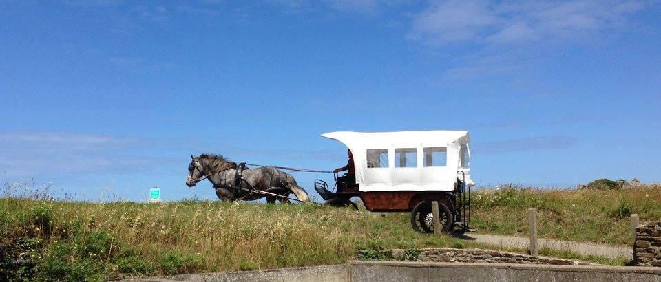 Les chevaux de la mer à Saint-Malo 1