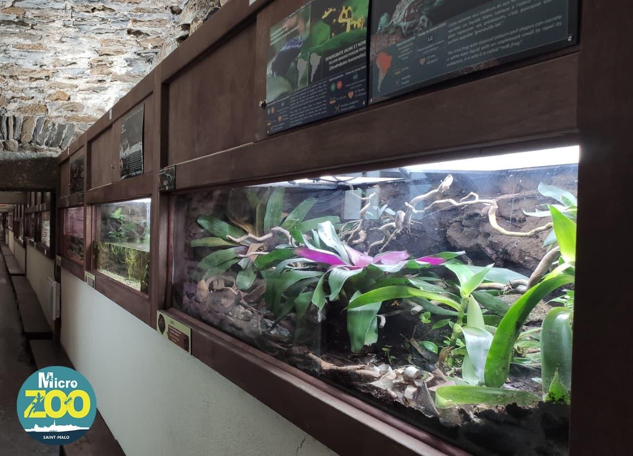 Micro Zoo de Saint-Malo