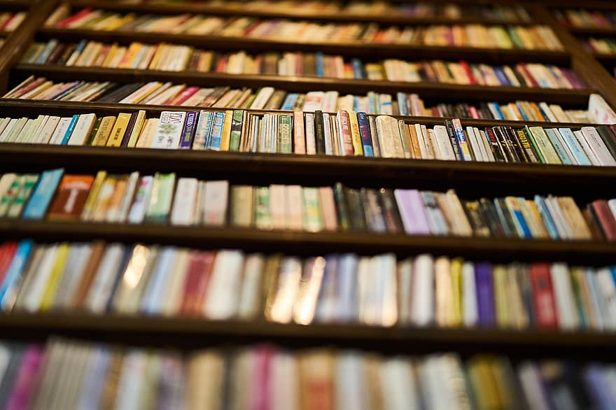Foire aux livres Saint Malo
