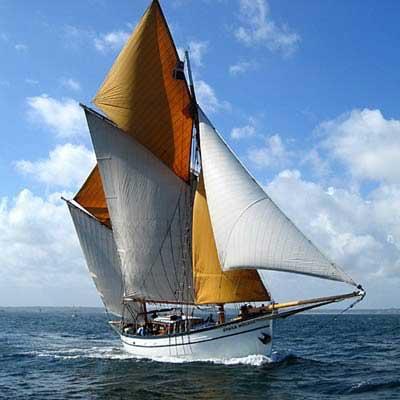 etoile-marine